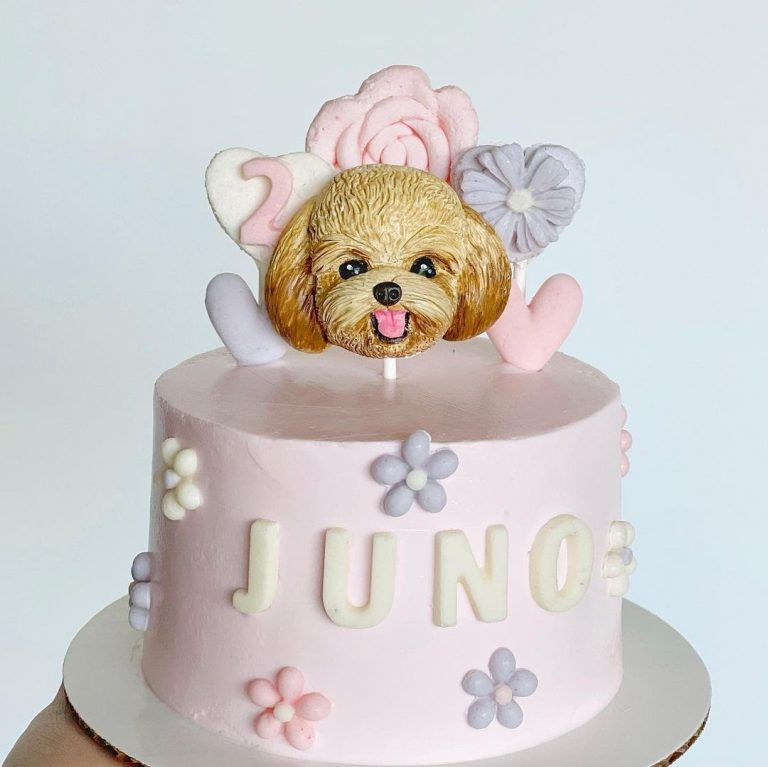 Top 10 Birthday Ideas You can Imitate for Your Dog